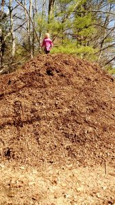 my daughter climbed a 12' wood chip pile so we had to take a picture